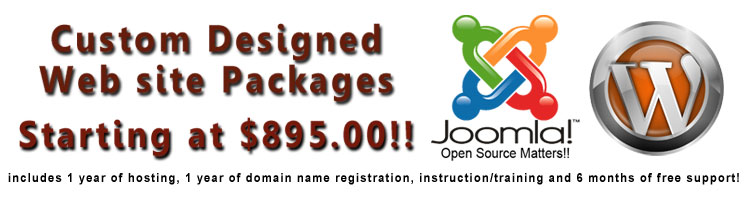 Custom CMS Web Design Packages Starting at $895